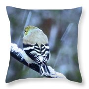 View From The Back Throw Pillow