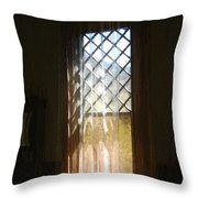 View From The Bathroom Window Throw Pillow