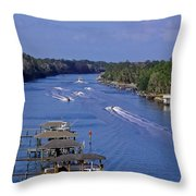 View From The Bridge Of Lions Throw Pillow