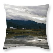 View From The Horse Barn Throw Pillow