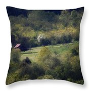 View From The Pond At The Hacienda Throw Pillow