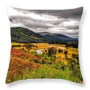 View From The River Dee Throw Pillow