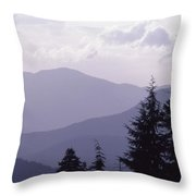 View From The Trees Throw Pillow