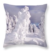 View From Two Top Mountain Loop Trail Throw Pillow