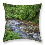 View In Vintgar Gorge - Slovenia Throw Pillow
