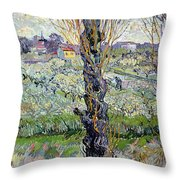 View Of Arles Throw Pillow
