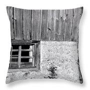 View Of Barn Exterior Throw Pillow