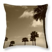View Of Castillo De San Marcos Throw Pillow
