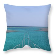 View Of Coral Throw Pillow