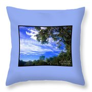 View Of Countryside In Frederick Maryland In Summer Throw Pillow