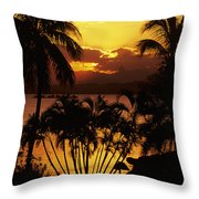 View Of Fiji Throw Pillow
