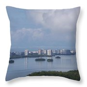 View Of Fort Myers Beach Throw Pillow