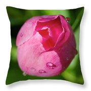 View Of Half Opened Tulip Throw Pillow