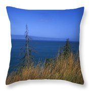 View Of Kachemak Bay, Alaska Throw Pillow