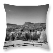 View Of Lake Willoughby Throw Pillow