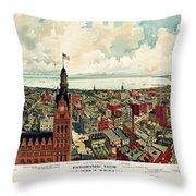 View Of Milwaukee 1898 Throw Pillow