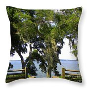 View Of Old Tampa Bay Throw Pillow