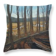 View Of Parkers Creek Throw Pillow