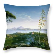 View Of The Bay Of Pozzuoli Throw Pillow