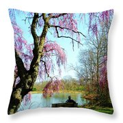 View Of The Lake In Spring Throw Pillow