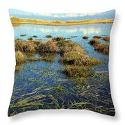 View Of The Marsh Throw Pillow