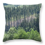 View Of The Mixed Forest Throw Pillow