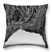 View Of The Natural Tunnel Of Hole In The Wall Beach Throw Pillow