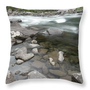 View Of The Wenatchee River Throw Pillow