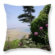 View Of Tramore Throw Pillow