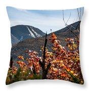 View On The Way Up Mt. Jo, Adirondacks Throw Pillow