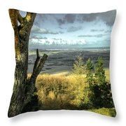 View Over Redcar Throw Pillow