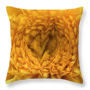 View Within Throw Pillow