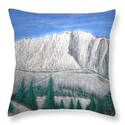 Viewfrom Spruces Throw Pillow