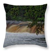 Viewing Tahquamenon Lower Falls Upper Peninsula Michigan 02 Throw Pillow