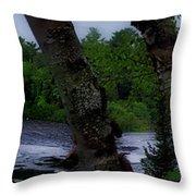 Viewing Tahquamenon Lower Falls Upper Peninsula Michigan Panorama 02 Throw Pillow