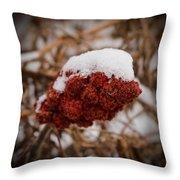 Vignettes - First Snow 1 Throw Pillow