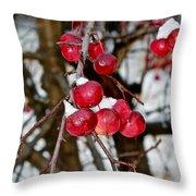 Vignettes - Snow Fruit Throw Pillow