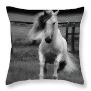 Vikingo Bw Throw Pillow