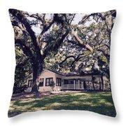 Villa At Flamingo Gardens Throw Pillow