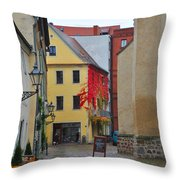 Village Red Vines Throw Pillow
