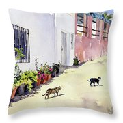 Village Street With Cats In Hortichuelas Throw Pillow