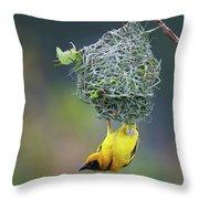 Village Weaver Throw Pillow