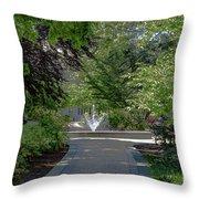 Villanova Fountain Throw Pillow