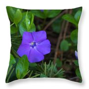 Vinca Blooming In The Forest Throw Pillow