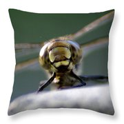 Vince The Dragonfly Throw Pillow