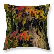 Vine And Hickory Throw Pillow