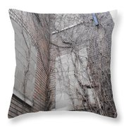 Vine Covered Dormitory Throw Pillow