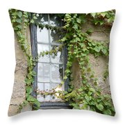 Vine-covered Mysteries I Throw Pillow