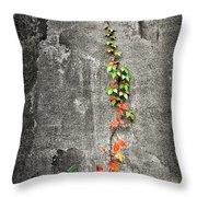 Vine In Autumn Throw Pillow