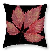 Vine Leaf Throw Pillow